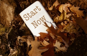 start now pamphlet in trees-min